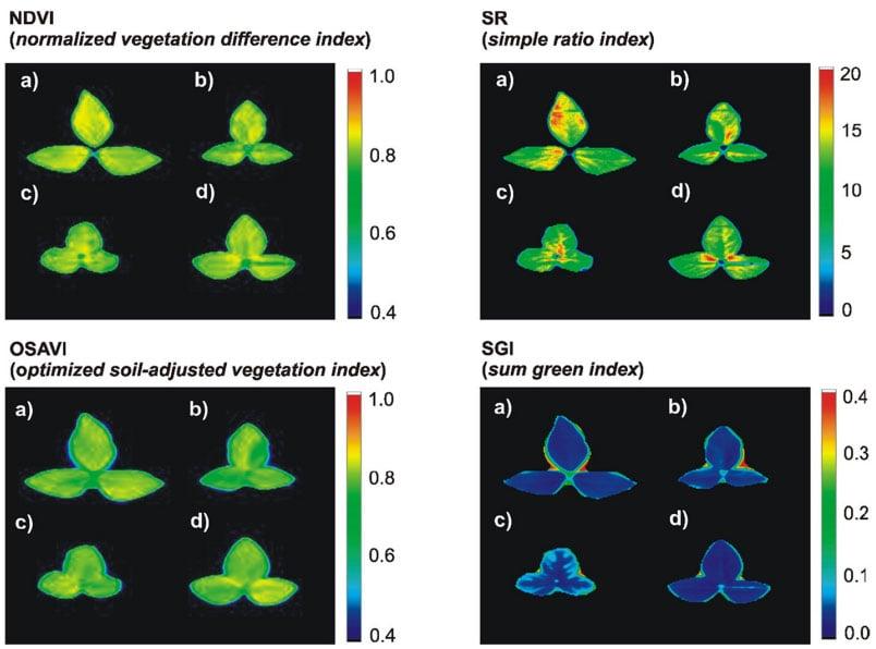 Hyperspectrale beeldvorming en de verzilting van ons landbouwgrond